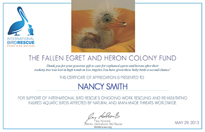 Egret-Certificate