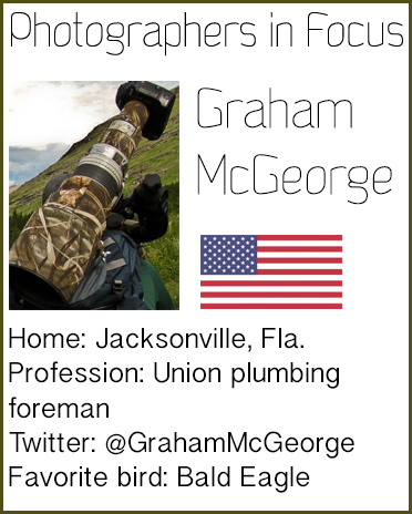 Graham-McGeorge