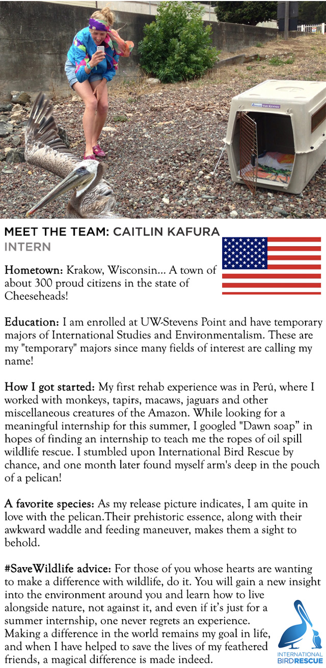 Meet-the-Team-Caitlin