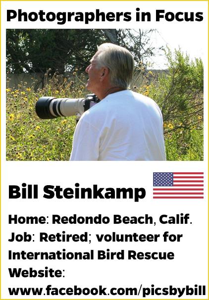 Bill-Steinkamp