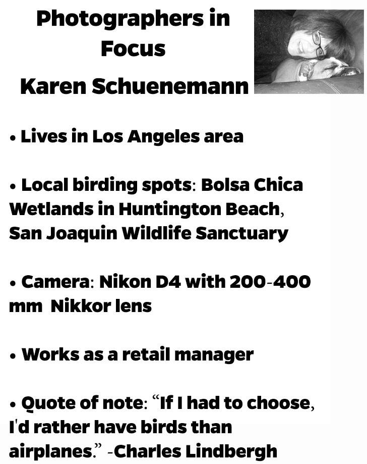 Karen-S-Photographer-in-Focus