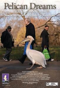 Pelican-Dreams-Final-Poster-A-204x300