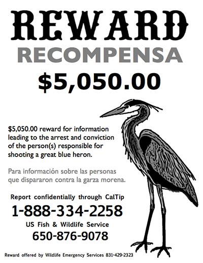 heron reward sign