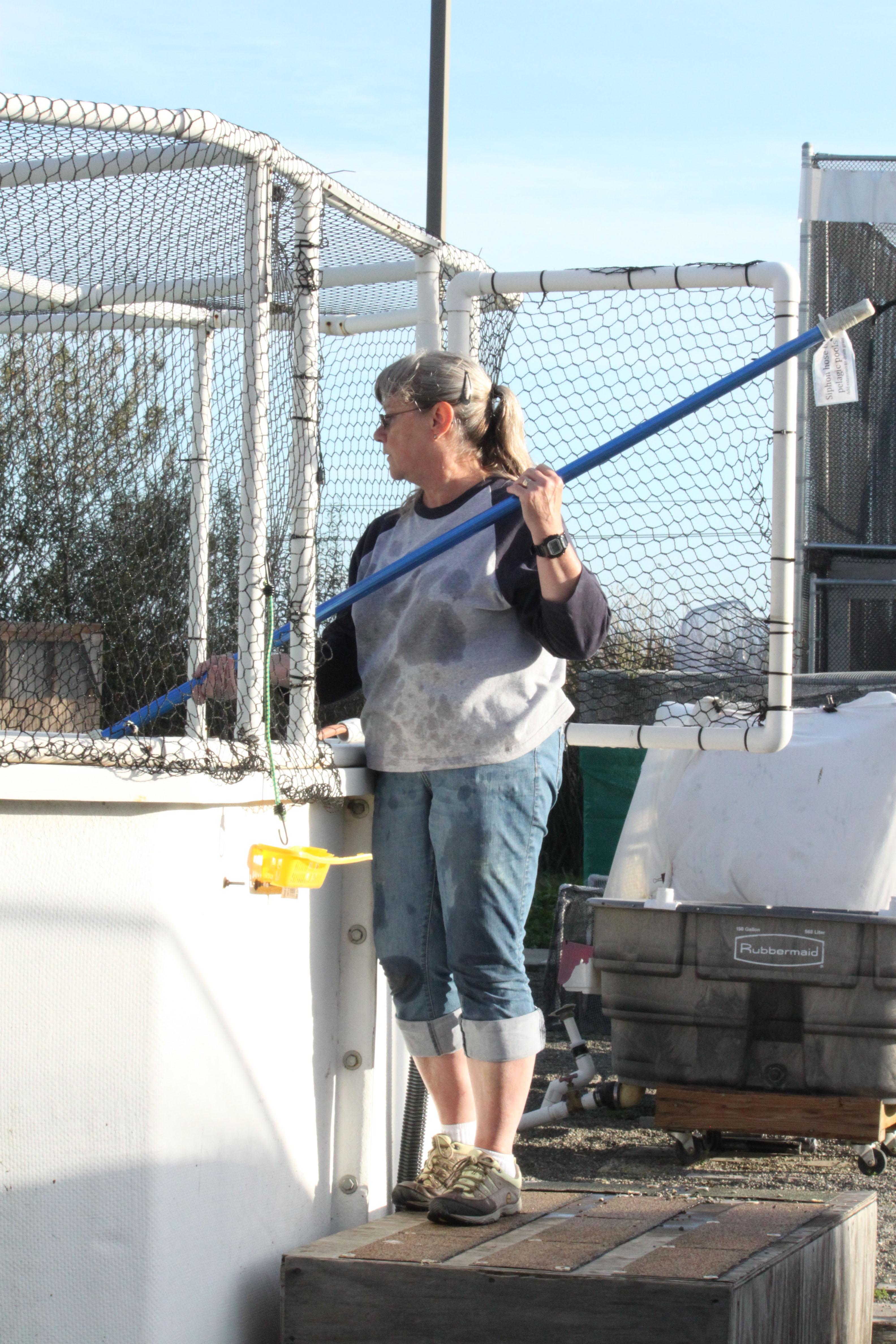 SF Bay Center volunteer Lela Nishizaki siphoning a pool